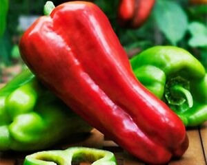 Organic Giant Red Pepper (unit/417g)