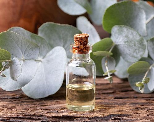Organic Eucalyptus Essential Oil 10g (£1.86/10g)