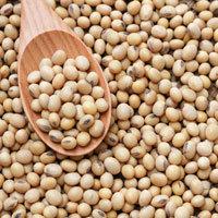 Organic Soya Beans 500g (£0.26/100g)
