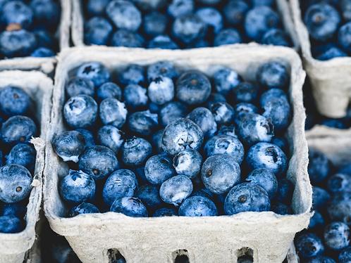Organic Blueberries 250g
