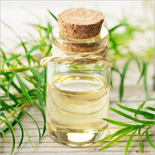 Organic Tea Tree Essential Oil 10g (£1.66/10g)