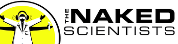 NS-text-logo-wide.png