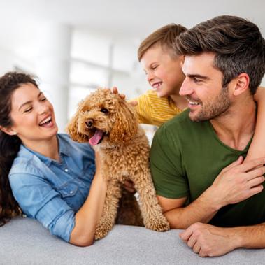 Conheça os seguros oferecidos pelo Prever
