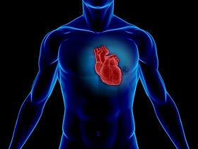 Omega 3 Heart Health