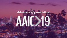 Interim Analysis of MOPEAD Project presented at AAIC 2019