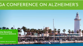 MOPEAD at VI Malaga Conference on Alzheimer's Disease