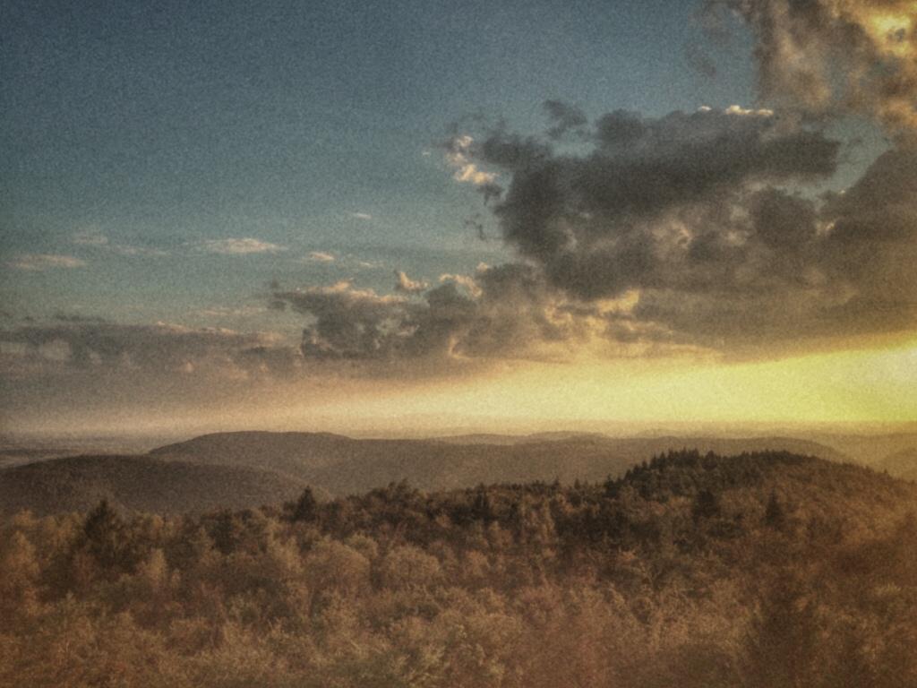 Les Vosges du nord