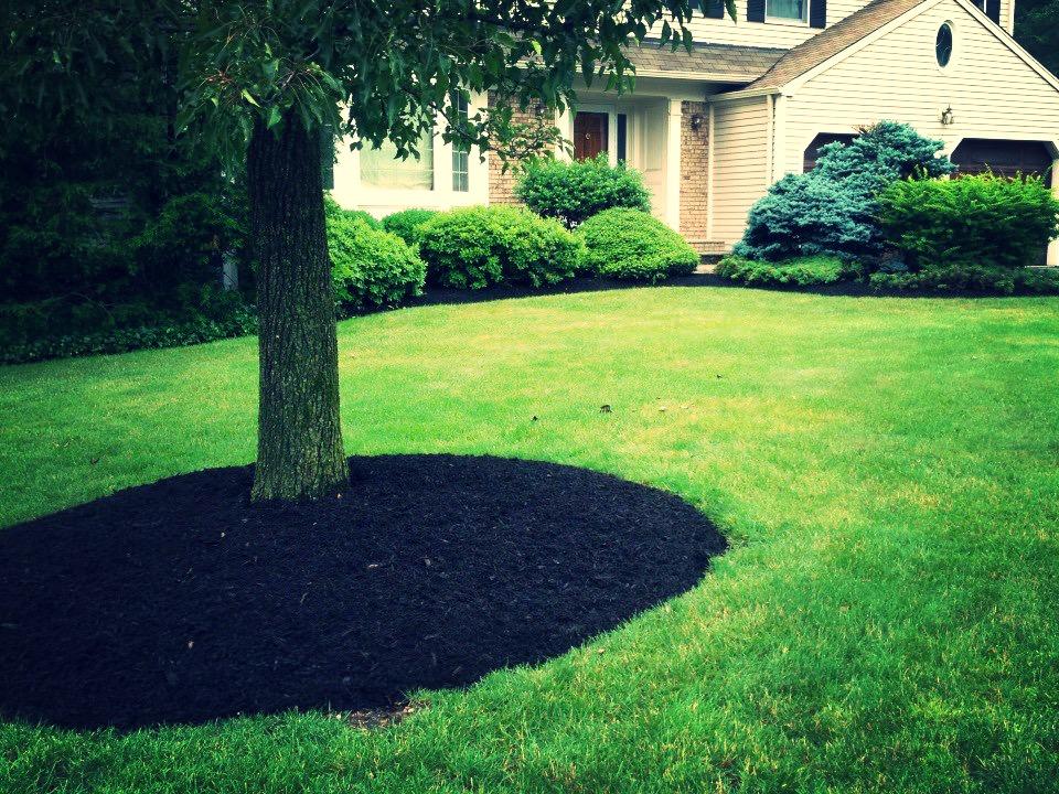 circular mulch_edited
