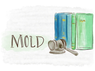 Mold Local Laws.png