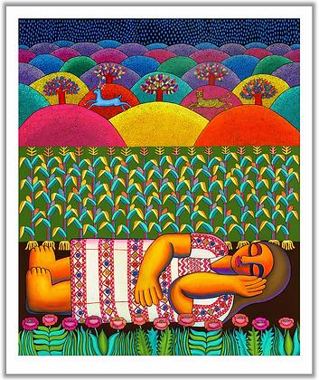 Ña'an ñuu savi / Mujer de la lluvia