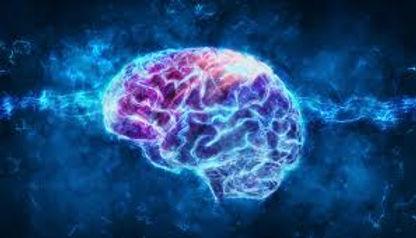 Blue Purple Brain Maria Chase Coaching B
