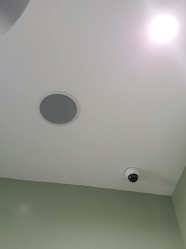 Ceiling Speaker and Security Camera
