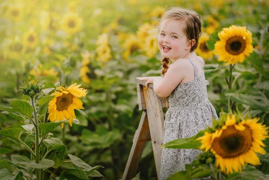 kariboukids_sunflower.jpg