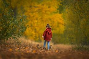 Twizel_Autumn_sRGB2.jpg