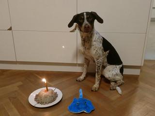 I. narozeniny
