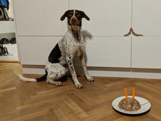 II. narozeniny
