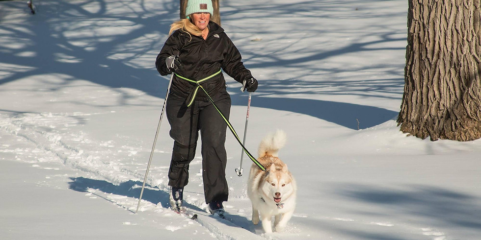 Intro to Skijoring (Bring your own Skis/Previous XCountry Ski Experience Required)