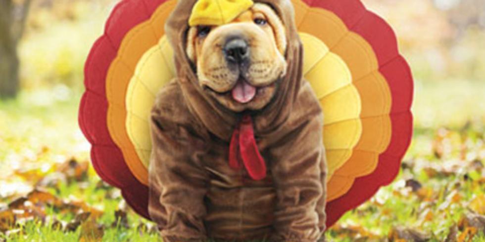 5K Turkey Trot