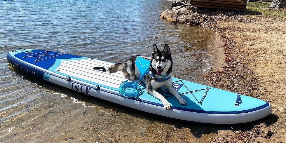 Paddle Boarding with your Dog