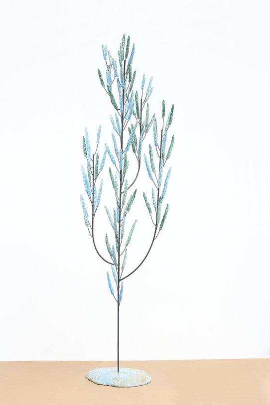 La bleu cristallise .jpg