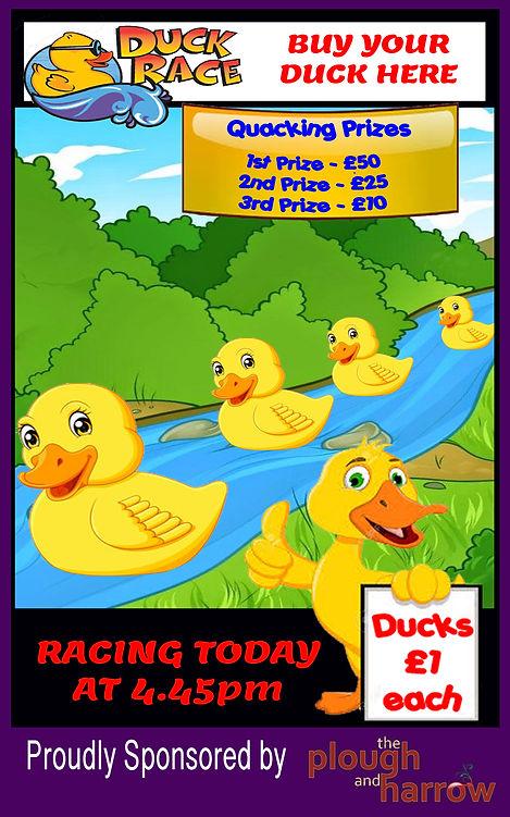 ducks banner.jpg