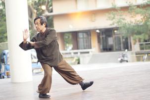蘇清標老師——楊家老架太極武藝特別課程
