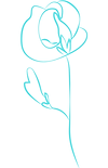 Single Flower.png