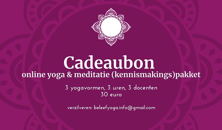 Kopie van Pruim en Wit Mandala Yoga Visi