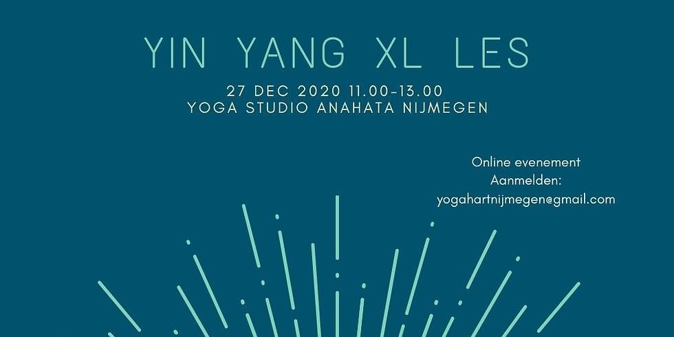 Yin Yang XL les met yoga & meditatie