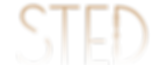 STED_White Background.png