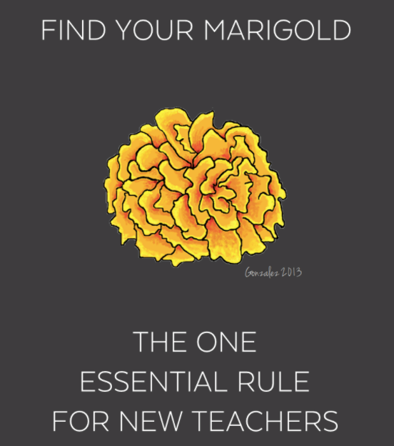 Find your marigold