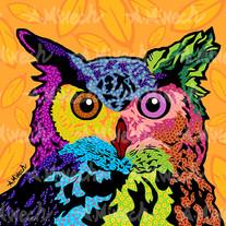 Owl Eurasian.jpg