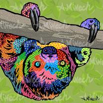 Sloth Valentino.jpg