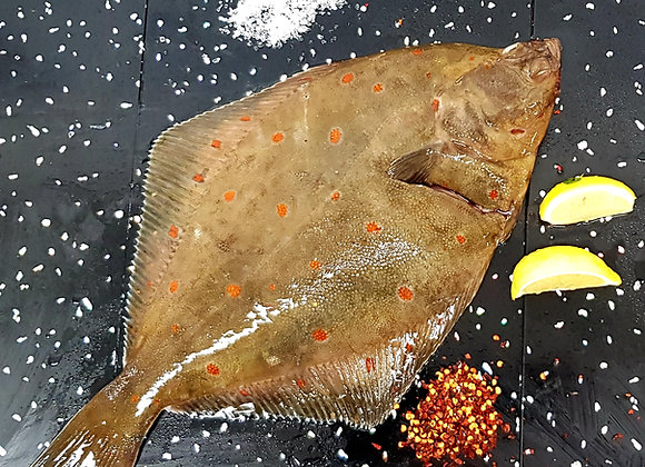 Brixham whole plaice