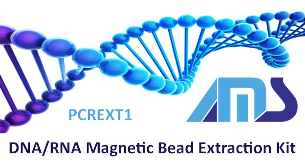 DNA/RNA Magnetic Bead Extraction Kit