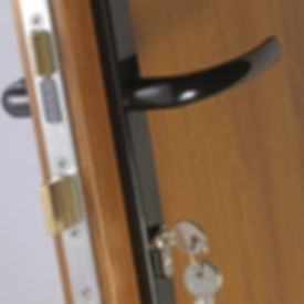 Irish Door Security