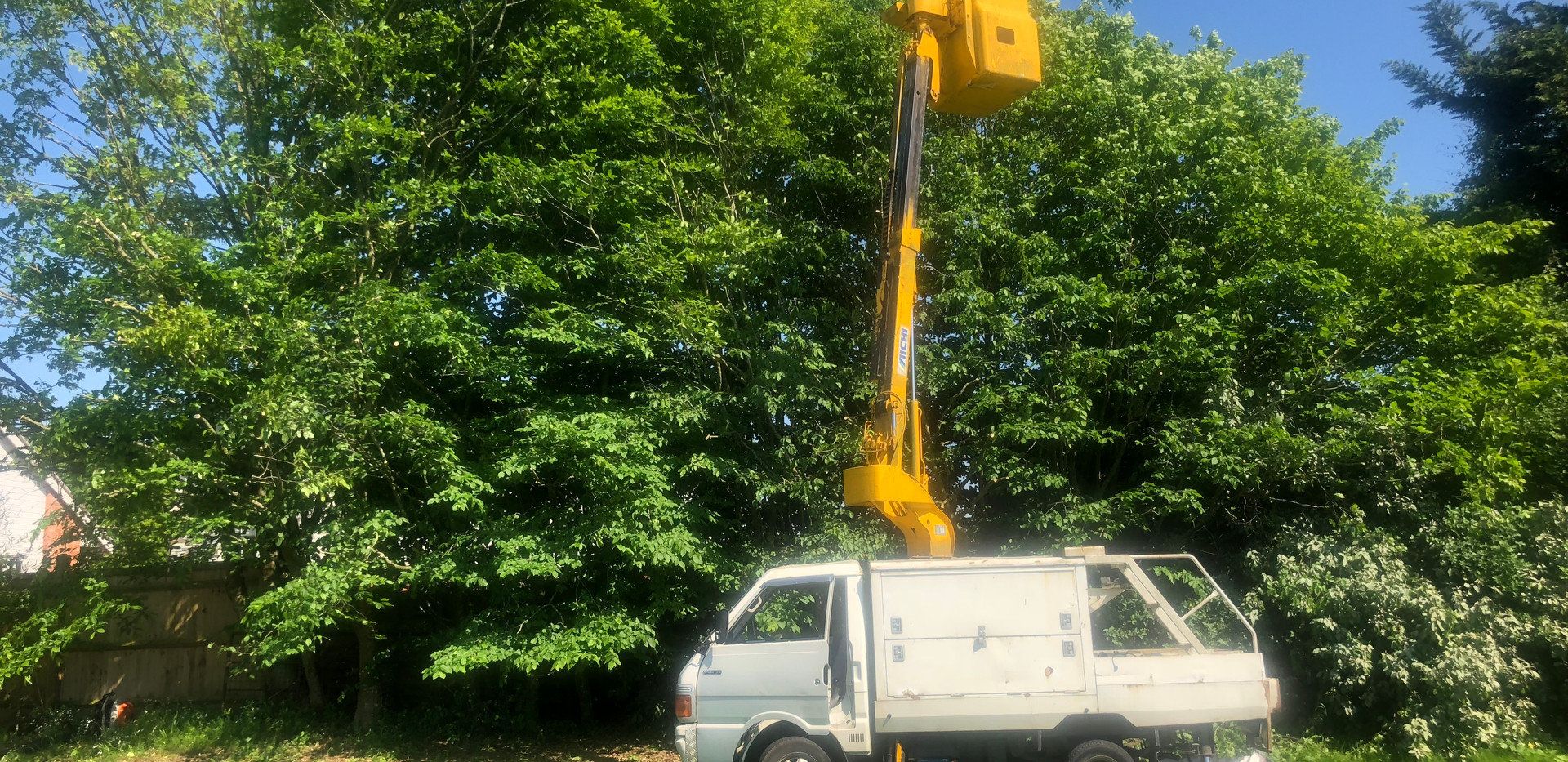 hedge trimming cherry picker