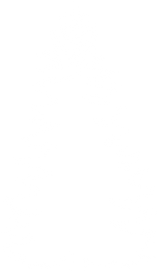 fir-tree1.png