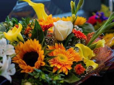 Broughshane Flowers