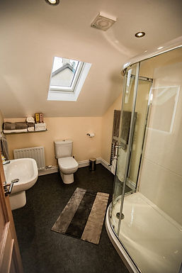 Slemish Farm Cottage Bathroom