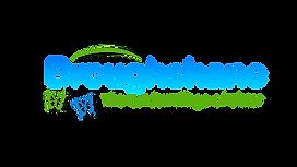 Broughshane Logo_white.png