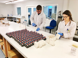 AMS Production Laboratories