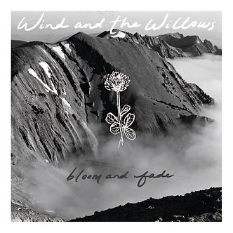 wind and the willows album cover.JPG