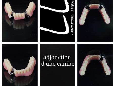 Adjonction d'une canine sur un châssis métallique