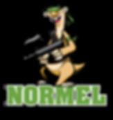 NormelLogo.png
