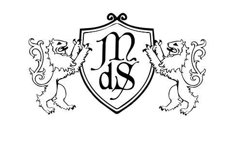 logo MDS 2020-01.png
