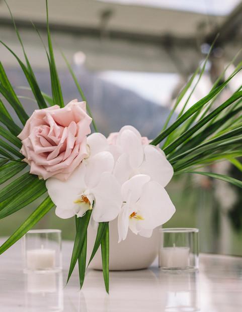 White Vase Queenstown