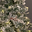 Thumbnail: Nome intagliato in plexiglas argento