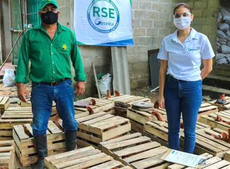 Más de 30 familias en la Guajira recibieron unidades productivas por parte de Gecelca