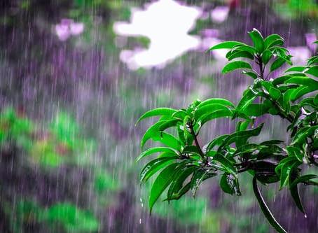 Recomendaciones para tener en cuenta ante la segunda temporada de lluvias